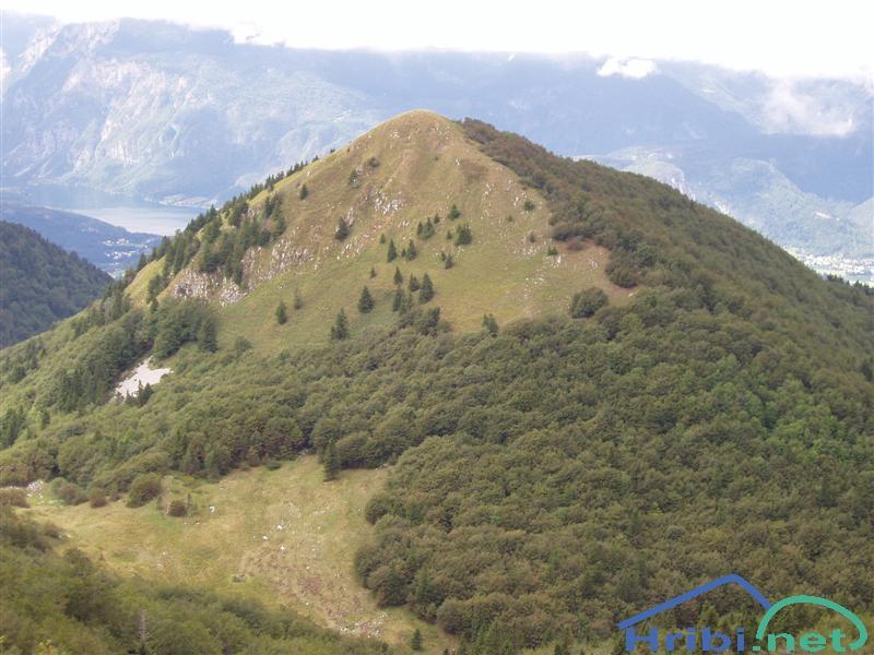 ŠAVNIK