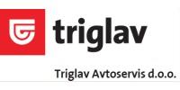 TRIGLAV AVTOSERVIS, D.O.O.